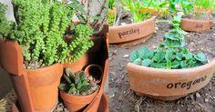 Repurpose Broken Pots