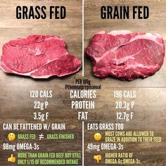 Keto-Approved, Grass-Finished, Beef Sticks Ready To Satisfy Your Snacking Urges. Beef Nutrition, Health And Nutrition, Mom Milk, Keto Food List, Keto Meal, Meat Shop, Grass Fed Beef, Fiber Foods, Good Fats