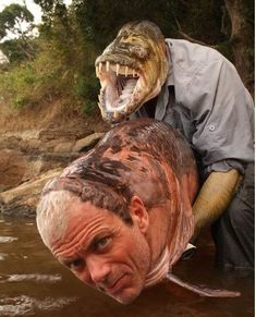 The Real River Monsters | The 16 Most WTF Animal Face Swaps