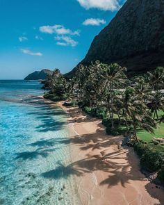 Beautiful beach in Hawaii! For more amazing. Beautiful beach in Hawaii! For more amazing travel content Make sure to checkout our story . Beach Trip, Vacation Trips, Dream Vacations, Vacation Spots, Beach Travel, Jamaica Vacation, Cruise Travel, Travel Trip, Summer Travel