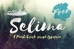 To celebrate our first anniversary in Creativemarket.com. Our present Selima font Brush Script, special for you.Thank you so much for the cooperation and support. We will committed to always offering fonts are fresh and quality. Don't forget ...