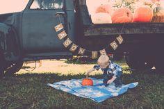 Farmer Birthday Party, Monster Trucks, Patches, Pumpkin, Bird, Photography, Pumpkins, Photograph, Birds