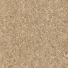 Marco Taupe Plaster Texture , wallpaper Textures, Techniques & Finishes