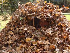 Leaf Fort by thestroms #Kids #Leaf_Fort