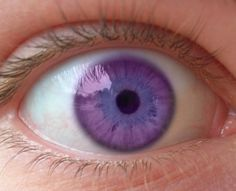 Green eyes make up only of the entire human population, and natural occurring Violet coloured eyes exist. Beautiful Eyes Color, Pretty Eyes, Cool Eyes, Violet Eyes, The Violet, Purple Eyes Disease, Rare Eye Colors, Rare Eyes, Aesthetic Eyes