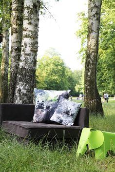 #salamanders #cushion #pillow #water #photography #illustration #sketch // #salamander #kissen #wasser #fotografie #zeichnung #gots #vegan #bio