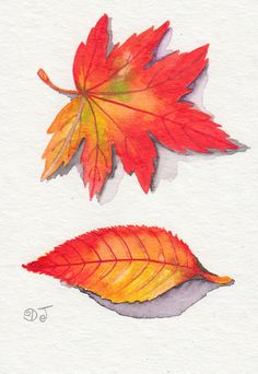 Fallen leaves.  Watercolor.