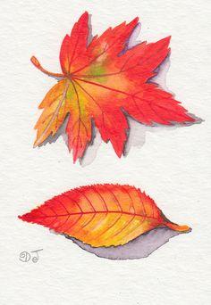 Fallen leaves.  Watercolor.