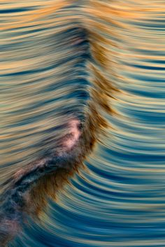Painterly long-exposure photography of California waves, by ©David Orias