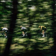 source instagram teamsky Out of the woods... and into the Pyrenees. One big day ahead #TDF teamsky 2017/07/13 17:55:52