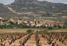 llegando a Haro, capital del vino de la Rioja
