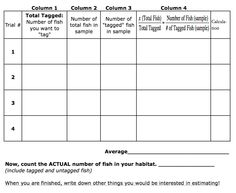 Mean Median Mode And Range Worksheets  Maths  Statistics