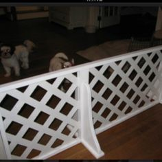 Portable Fence My Husband Built To Keep Our Little Dogs