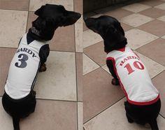 お名前入り(名入れ)体操服・犬服、ダックス服通販Hardy's mart