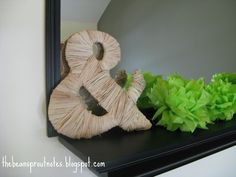 The Bean Sprout Notes: Diaper Box Raffia Ampersand