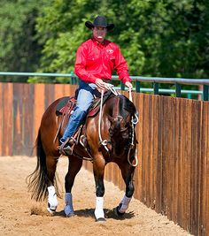 Downunder Horsemanship | Training Tip of the Week: Review and build on the exercises you teach your horse each day.