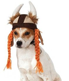 Rubies Costume Company Viking Hat with Braids for Pets MediumLarge ** You can get more details by clicking on the image.