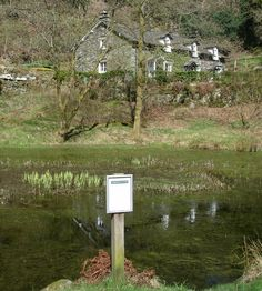In footsteps of Wordsworth. Near Dove Cottage. The birds are singing in the distant woods; Over his own sweet voice the Stock-dove broods; The Jay makes answer as the Magpie chatters … Stock Dove, Places To See, Places To Travel, Cumbria, Lake District, Wander, Outdoor Structures, Magpie, Bucket Lists