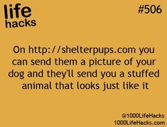 On http://shelterpups.com you can send them a picture of your dog and they'll send you a stuffed animal that looks just like it.