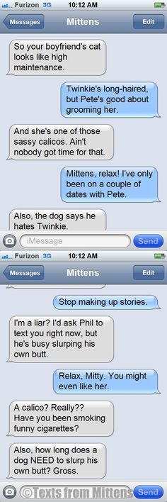 NEW Daily Texts from Mittens: The Twinkie's a Calico Edition  More Mittens: http://textsfrommittens.com/