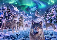 Specially commissioned by MGL, our fantasy collection features beautifully detailed images that are full of imagination - perfect for puzzles, posters & more! Wolf Images, Wolf Photos, Wolf Pictures, Bear Images, Native American Wolf, Winter Wolves, Fantasy Wolf, Fantasy Art, Snow Forest
