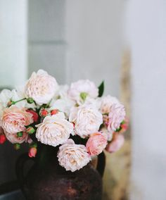 dreamy pink roses