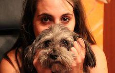mi perro Dogs, Animals, Animales, Animaux, Pet Dogs, Doggies, Animal, Animais