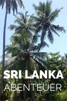Sri Lanka ist ein kleiner Inselstaat südlich von Indien. Traumhafte Strände, leckeres Essen und interessante Kultur locken in das Land. Und dann läuft alles nur noch schief. #srilanka #reisen
