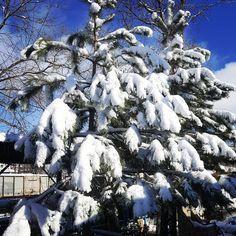Winter is coming via: #probeatzpromo