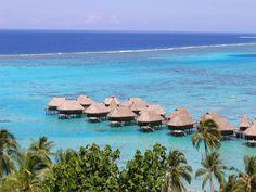 Moorea, Tahiti (photo by Carolyn Sorensen)