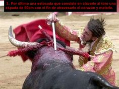 The bull will die, but he's getting even first. Stop bullfighting!!!!!