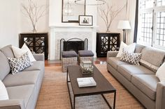 Gray Striped Rug - Contemporary - living room - Benjamin Moore Stonington Gray - Martha O'Hara Interiors