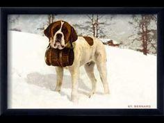 Bernard with Keg in Snow, Sun Valley, Idaho Vintage Ski, Vintage Prints, St Bernard Dogs, Your Spirit Animal, Sun Valley, Sports Art, Cool Posters, Vintage Images, Find Art