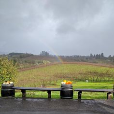 Rainbow at the Iron Horse Winery and Vineyards in Sonoma County, California