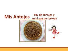 Cheesecake de tortuga ,Turtle cheesecake  y mini cheesecake .
