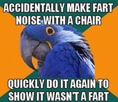 Make sure they know it was the chair farting and not you.