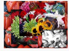 ABUNDANCE - Collage (mixed media tecnique with pictures) - 0,50 x 0,70 m - 2014