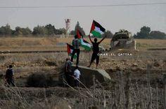 #PHOTO: Waving flags in occupied Palestine. #BDS #EU #Europe #FreePalestine #Israel #Palestine #World