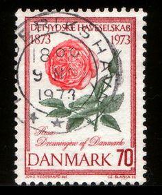 Denmark Postage stamp ; Rose