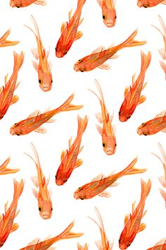 Hand painted orange goldfish design by jillbyers.  Beautiful watercolor fish painting great for summer napkins, upholstery or wallpaper!