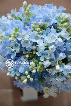 rosarium ブルーのブーケ