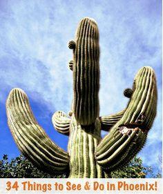 34 Fun Things to See and Do in Phoenix! ~ via TheFrugalGirls.com #travel #phoenix #arizona