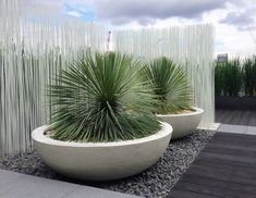 Urbis Design creates curvy contemporary garden planters, indoor containers and furniture with pure forms in an inspired range of colours and finishes Large Concrete Planters, Large Outdoor Planters, Large Garden Pots, Large Plant Pots, Tree Planters, Outdoor Pots, Large Plants, Outdoor Fountains, Wall Planters