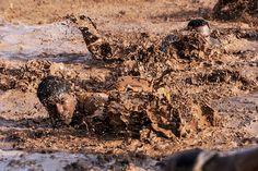 Soldiers, Army, Basic Training, Mud