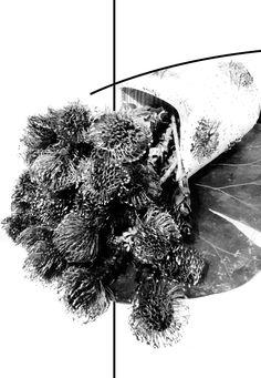 arte donaflor Flower Designs, Abstract, Artwork, Flowers, Art, Summary, Work Of Art, Auguste Rodin Artwork, Florals