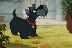 """This is how it started for me (Nic) I saw Jock and have dreamed of Scotties ever since!  Original Disney cells of Jock the Scottish Terrier in """"Lady & The Tramp"""""""