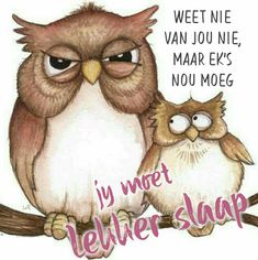 Goeie Nag, Good Night Image, Special Quotes, Day Wishes, Sweet Dreams, Beautiful Pictures, Teddy Bear, Sayings, Afrikaans