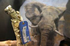 Varios objetos hechos con animales salvajes que fueron objeto de tráfico ilegal, entre los 1,5 millones de objetos incautados y almacenados en el Depósito Nacional de Fauna Salvaje del Servicio de Pesca y Vida Salvaje de Estados Unidos, en Commerce City, Colorado. El lugar ofrece un macabro vistazo al coste del tráfico internacional de animales amenazados y en peligro. (AP Foto/Brennan Linsley)