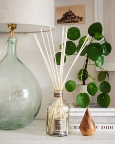 Top reed diffusers.  To bring fragrance to your home, and work space.  Perfect summer scents. Home Scents, Home Fragrances, Bohemian Apartment, Summer Scent, Study Space, Diffusers, Bedroom Styles, Minimalist Home, Scented Candles