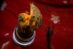 An Indian woman drops powdered color and flower petals from her hand as she plays Holi during Holi festivities at a temple in Amritsar, India, 26 March 2013. (Raminder Pal Singh/EPA).